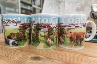 Coast to Coast Mugs