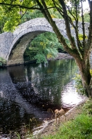 Bridge over River Swale near Inelet in Yorkshire Dales