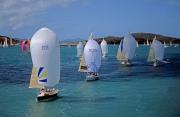 Hamilton Island Race