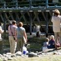 Quinsam River Hatchery
